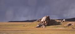 Tibetan Plateau, Tibet 2017 (reurinkjan) Tags: tibetབོད བོད་ལྗོངས། 2017 ༢༠༡༧་ ©janreurink tibetanplateauབོད་མཐོ་སྒང་bötogang tibetautonomousregion tar damzhungའདམ་གཞུང་།county palgonདཔལ་མགོན།county namtsoགནམ་མཚོ། namtsochimo namtsochukmo lakenam heavenlylake tibetanlandscapepicture landscapeཡུལ་ལྗོངས།yulljongsyünjong landscapesceneryརི་ཆུ་ཡུལ་ལྗོངསrichuyulljongsrichuyünjong landscapepictureཡུལ་ལྗོངས་རི་མོyulljongsrimoyünjongrimo natureརང་བྱུང་ཁམས་rangbyungrangjung natureofphenomenaཆོས་ཀྱི་དབྱིངས་choskyidbyings earthandwaternaturalenvironmentས་ཆུ་sachu