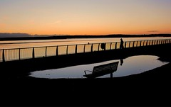 Stroll by the Mersey (ronramstew) Tags: mersey liverpool evening stroll man silhouette merseyside bench puddle olympus17mm28