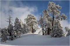Larra-Belagua007 (Fermin Ezcurdia) Tags: larra belagua navarra pirineo nieve pyrenees esquinordico arlasarette anie