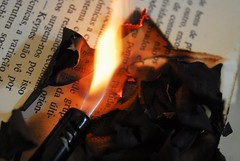 Fahrenheit 451 (Lenaprof) Tags: macromondays myfavouritenovelfiction