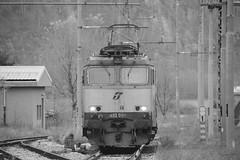 domo II set 60 #41 (train_spotting) Tags: beuracardezza domoii tigre tigrone e652080 trenitaliacargo trenitalia ticargo divisionecargo mir merciitaliarail nikond7100