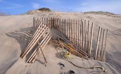 All fall down (sweetpeapolly2012) Tags: beach sand sea sky rocks rockpool erosion fissures seaweed limpets dunes shells seashorefinds seashore seaside