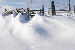 Snow shapes