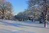My Last Snowy . . . (doc030395) Tags: iowa winnebagocounty pilotknob statepark countryroad korths woods morning hiking pristineblues lastsnowy winterlandscape