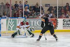 "2018 ECHL All Star-0454 • <a style=""font-size:0.8em;"" href=""http://www.flickr.com/photos/134016632@N02/39785809061/"" target=""_blank"">View on Flickr</a>"