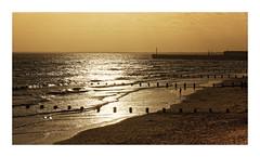 Golden Shore (Myrialejean) Tags: golden shore beach wave sea coast costal bridlington eastriding eastcoast sand sky evening sunset winter outdoors