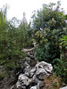 P1130685-2 (Simian Thought) Tags: xitang china watertown