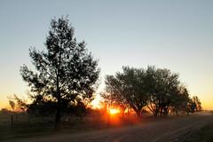 El bien y el mal (Lady Smirnoff) Tags: atardecer sunset entardecer contraluz backlight nature naturaleza