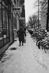 ma rue ce matin (fotoleder) Tags: rue nb noiretblanc bw monochrome 2018 hiver ville neige immeubles arbres street photoderue