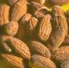 Almond macro (Steve4343) Tags: steve4343 macro 105mm almond nuts food snack brown yellow