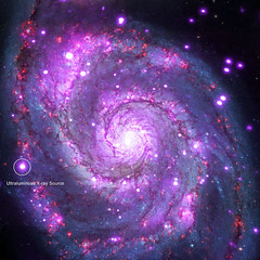 Ultra-Luminous X-Rays in the Whirlpool Galaxy, annotated (sjrankin) Tags: 4march2018 edited nasa annotated galaxy whirlpoolgalaxy m51 chandra chandraspacetelescope xray