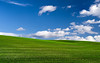 Brentwood Bliss (Explore #193) (mikeSF_) Tags: california wwwmikeoriacom brentwood bliss windows xp wallpaper hills clouds teletubbies grass green blue sky field farm landscape outdoor midday mike oria pentax 645 645z dfa55 55mm