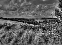 Romandie (Nklphotograpie) Tags: nature photo nikon d5300 hdr fou blé clouds nuages filtre star objectif temps arbres
