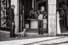 waiting (Gerard Koopen) Tags: spanje spain malaga waiting dog walkingthedog dailylife everydaylife people man men fashion bw blackandwhite blackandwhiteonly candid straat street straatfotografie streetphotography fujifilm fuji xpro2 35mm 2018 gerardkoopen littledoglaughednoiret streetlife
