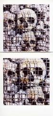 Skulls (Valt3r Rav3ra - DEVOted!) Tags: fuji instax instaxsquare colori skulls valt3r valterravera morte death sanbernardinoalleossa milano
