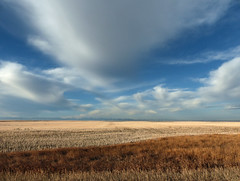 Before winter arrived (annkelliott) Tags: alberta canada seofcalgary nature scenery landscape field backroad countryside rural ruralscene prairie goesonforever stubble distantmountains sky blue clouds outdoor fall autumn 13december2017 fz200 fz2004 panasonic lumix annkelliott anneelliott ©anneelliott2017 ©allrightsreserved