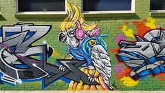 Stine Hvid... (colourourcity) Tags: streetart streetartaustralia streetartnow graffiti graffitimelbourne melbourne burncity awesome nofilters colouurourcity stinehvid stine cockatoo