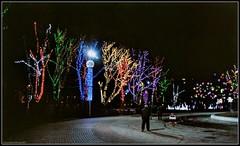 The New Year's Dnipro. (Ігор Кириловський) Tags: c41 dnipro ukraine slr nikonf5 nikkor 50mmf18afd film kodak colorplus200 bw uvhaze mrcnano xspro digital markstudiolab newyear