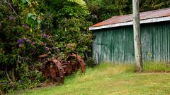 Any Old Iron? (alasdair.matthews) Tags: nz newzealand nikon d810 landscape steel iron scrap abandoned tractor industry industrial heritage