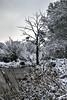 Snow 2018 (Haxtorm) Tags: châteaudechambord chambord loiretcher loire loirevalley centre france château snow neige winter