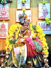 arthanaareeswarar (dillipan46) Tags: vaembu muthumari muthumariamman kosapet amman arthanaareeswarar alangaram