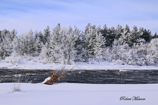 Hoar Frost on the Black River #4