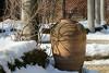 Wisteria Vines under Snow 48 of 365 (Year 5) (bleedenm) Tags: chicagobotanicgarden winter 2018 february garden vines outdoors snow cold