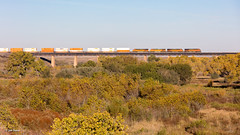 BNSF 7643 East at Fort Sumner, NM (thechief500) Tags: bnsf clovissubdivision railroads nm newmexico