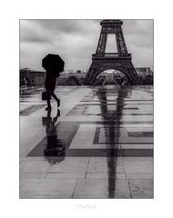 Paris n°167 - l'Homme en noir (Nico Geerlings) Tags: ngimages nicogeerlings nicogeerlingsphotography paris france trocadero toureiffel eiffeltower rain raining rainy silhouette leicammonochrom 50mm summilux streetphotography