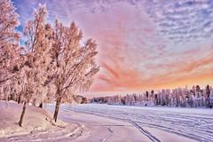 Älven 20180113 (johan.bergenstrahle) Tags: 2018 älv finepicsse hdr januari january landscape landskap morgon morning natur sunrise sverige sweden soluppgång umeälv umeriver vännäs winter vinter