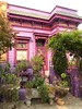 San Francisco, CA, Noe Valley, Colorful Victorian Cottage (Mary Warren 10.0+ Million Views) Tags: sanfranciscoca noevalley architecture building house residence pink purple garden lavender pottedplants nature flora plants