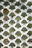 Prototype Modular System Could Bring Green Walls to Parking Garagesby by Mark Simmons (Архитектурный Журнал) Tags: bring could garagesby green mark modular parking prototype simmons system walls бы то
