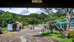 View form the barn (Kathrin & Stefan) Tags: building bush car cloud food nature outdoor people stall vehicle aucklandwaitakere northisland newzealand