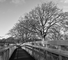 Dorrator Bridge to Larbert (picsbyCaroline) Tags: bridge scotland river black white unitedkingdom winter walk metal structure