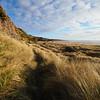 M2041707 E-M1ii 7mm iso200 f2.8 1_2500s SingleAF (Mel Stephens) Tags: 20180204 201802 2018 q1 1x1 square uk scotland aberdeenshire olympus mzuiko mft microfourthirds m43 714mm pro omd em1ii ii mirrorless st cyrus coast coastal landscape best