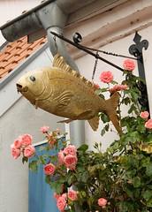 Fisch (G_u_e_d_e) Tags: stadt stadtansicht häuser strasen gassen kopfsteinpflaster schleswigholstein norddeutschland