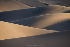 Death Valley (Bob Bowman Photography) Tags: dunes sand shadows light lines curves details landscape desert california deathvalley nikon