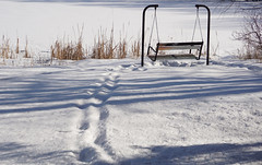 Dreaming of spring (lindakowen) Tags: winter afternoonshadows willowpond snow snowylandscape