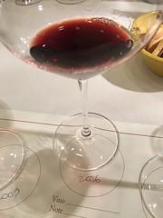 IMG_3650 (burde73) Tags: vietti barolo castiglione falletto villero langhe tasting wine nebbiolo cantina cellar
