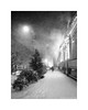 Impending snowstorm (Alexandr Voievodin) Tags: city street winter snow building road architecture spruce blizzard lamp blackandwhite monochrome xiaomiredminote2 ngc
