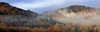 Winter Mist (PJ Swan) Tags: mist dunkeld perthshire winter trees magicmoments