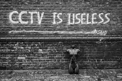 CCTV Is Useless 2018 © (wpnewington) Tags: cctv prop binoculars brother big 1984 orwell orwellian eastend brick