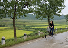 North Korean woman riding a bicycle in the countryside, North Hwanghae Province, Kaesong, North Korea (Eric Lafforgue) Tags: agriculture asia bicycle bicylce colourimage communism countryside cultivatedland dailylife day dictatorship dprk dprk3286 environment field gaeseong horizontal kaesong landscape lookingatcamera nature nonurbanscene northhwanghaeprovince northkorea northkorean oneperson onewomanonly outdoors poverty road ruralscene scenics tranquilscene tranquility transportation traveldestinations 北朝鮮 북한 朝鮮民主主義人民共和国 조선 coreadelnorte coréedunord coréiadonorte coreiadonorte 조선민주주의인민공화국 เกาหลีเหนือ קוריאההצפונית koreapółnocna koreautara kuzeykore nordkorea північнакорея севернакореја севернакорея severníkorea βόρειακορέα