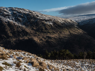 Trees and the Hill - Loch Eck Feb 2018