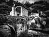Liguria : Badalucco (Roberto Defilippi) Tags: 2018 112018 rodeos robertodefilippi tokina1116mmf28 bn bw ponte bridge liguria