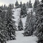 Harz-Oderbrueck_e-m10_1012074054 thumbnail