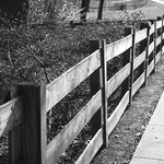 Just Another Fence thumbnail
