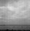 Angry birds over the mudflat (Rosenthal Photography) Tags: 20180107 wremen nordsee weser rodinal15021°c15min mittelformat landschaft bnw watt schwarzweiss bw rolleiflex35f 6x6 analog ilfordhp5 birds mudflat northsea sea mood winter january seascape nature water clouds landscape rollei rolleiflex sk schneiderkreuznach xenotar 75mm f35 35f mediumformat blackandwhite ilford hp5 hp5plus yellowfilter yellow filter rodinal 150 epson v800