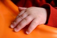 #babyhand #8months #8 #hand #baby #child #adorable #orange 👶 (Maria Grazia Cancedda) Tags: 8 hand babyhand 8months adorable baby child orange
