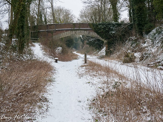 A Road Bridge over the disused Meon Valley Railway